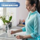"Aquintos automatik Rückspülfilter mit Druckminderer und Manometer RDXA 1 - 10 bar 1""Zoll - DN25 Hauswasserfilter Hauswasserstation"